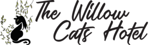 The Willow Cats Hotel